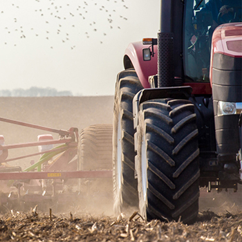 Agriculture At Work With A Permanent Life Insurance Strategy